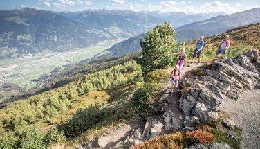 Spieljoch summer | © Erste Ferienregion im Zillertal
